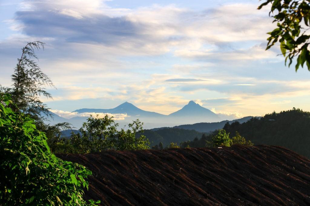 Virunga Berge Uganda