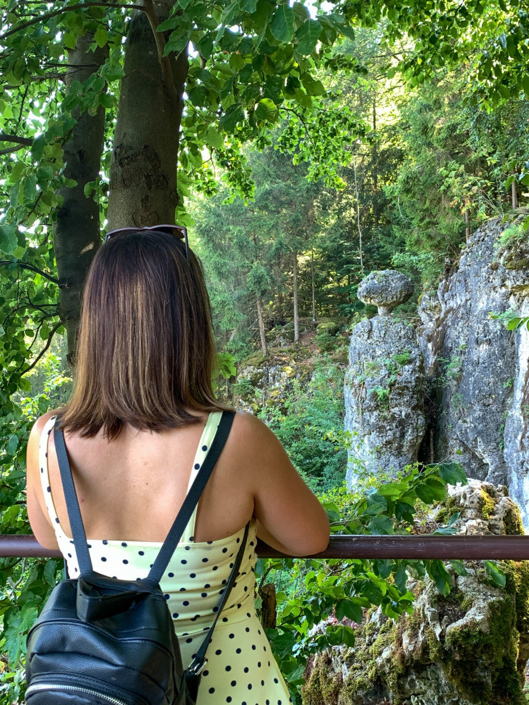 Schwammerl am Walderlebnispfad in Velburg