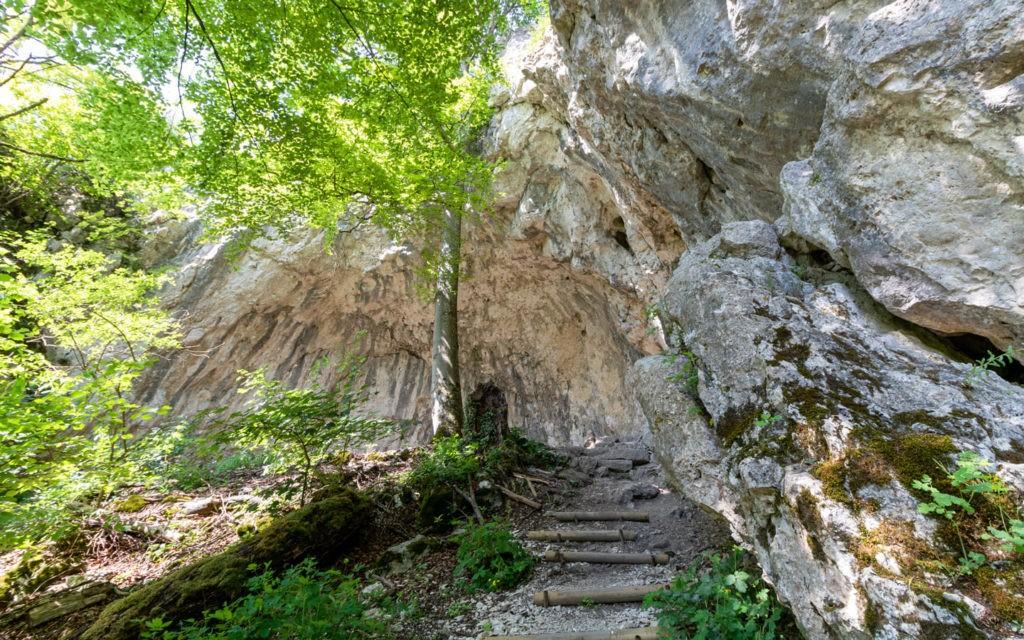 Felswand Friedrichsruh Altmühltal