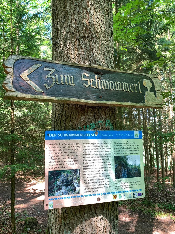 Wegweiser zum Schwammerl am Walderlebnispfad